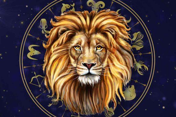 14 motive Leul este Regele zodiacului horoscop 1 585x390 - 14 motive pentru care Leul este Regele zodiacului