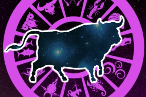 ce nu stiai despre tauri 585x390 - Lucruri pe care nu le stiai despre Tauri