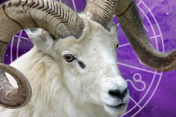 de ce sunt berbecii speciali 2 585x390 - De ce sunt nativii Berbec  speciali?