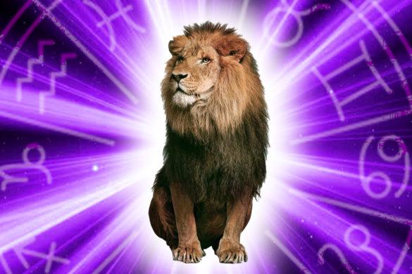 tot ce vrei sa stii despre zodia leu cel mai puternic semn dominant 585x390 - Tot ce vrei să stii despre zodia Leu! Cel mai puternic semn, dominant si...