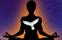 Cum recunoști animalul tău spiritual?