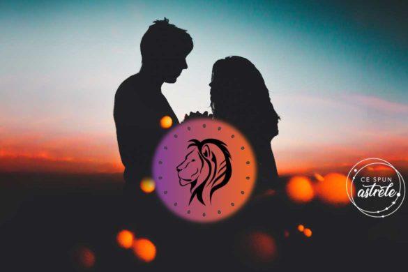 relatie zodia leu compatibilitate balanta 585x390 - Genul de relație care te caracterizează: ZODIA LEU