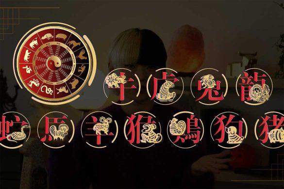 zodiac chinezesc cariera 585x390 - ZODIAC CHINEZESC: Ce carieră să alegi, în funcție de semnul tău astrologic