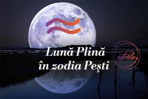 Luna Plina in zodia Pesti- august 2018