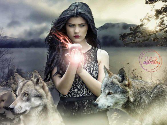 Zeii și zodiile