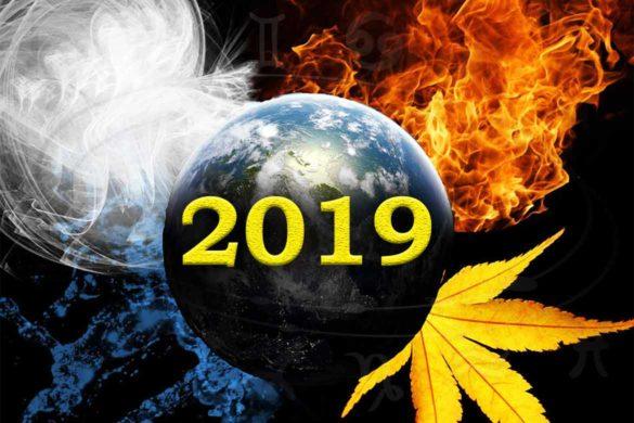 horoscop zodii 2019 elemente fecioara varsator 585x390 - Horoscopul celor 4 elemente astrologice. Ce rezervă 2019 pentru nativii elementelor de apa, foc, aer sau pamant?