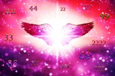 Îngerii ne trimit mesaje prin numerele pe care le vedem cel mai des! Sunt cele mai clare semne!