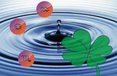 Zodiile de apă sunt favoritele astrelor în luna Iunie – Află ce le rezervă viitorul!