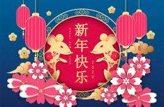 HOROSCOP 2020 – Ce aduce Noul An Chinezesc pentru fiecare Zodie în parte