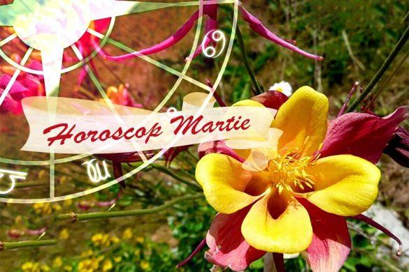 horoscop martie oportunitati 585x390 - HOROSCOP MARTIE 2021 - Avem acum curajul să ne asumăm riscuri!