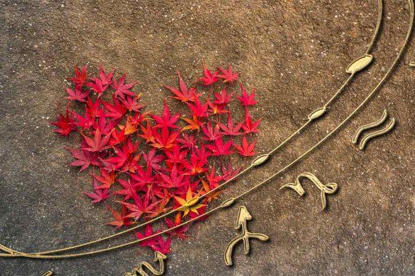 horoscop dragoste saptamana 18 octombrie 585x390 - Horoscop Dragoste pentru Săptămânaîn curs 18-24 Octombrie2021 - Resimțim totul la intensitate maximă!